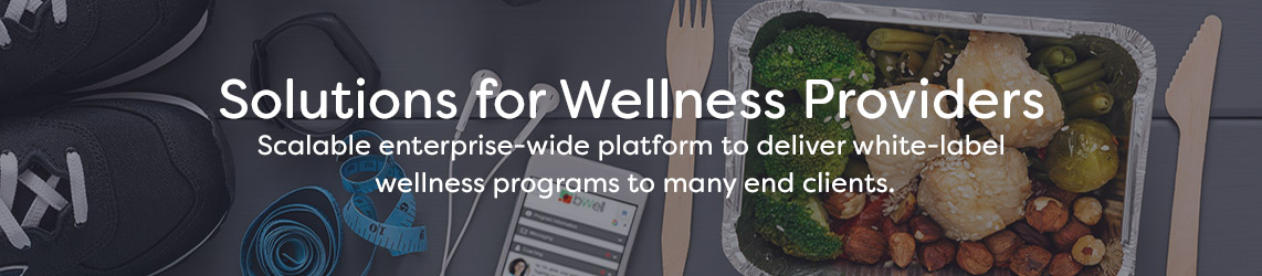 Solution for Wellness Providers Banner