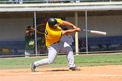 Baseball player higging a ball
